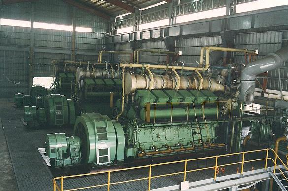 Niigata edmonton power generator